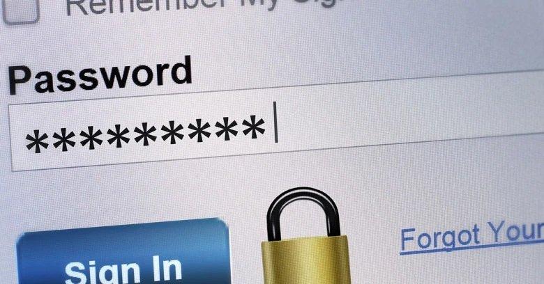 password campo entrada
