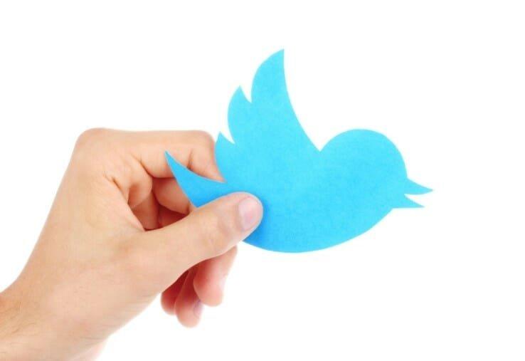 twitter logo passaro