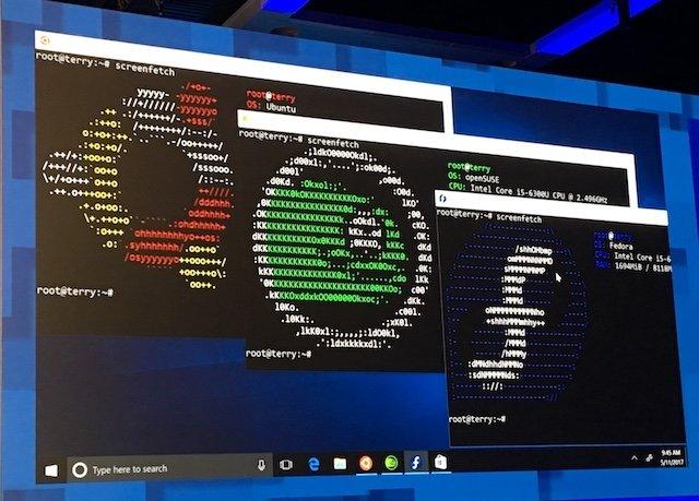 windows linux instalado